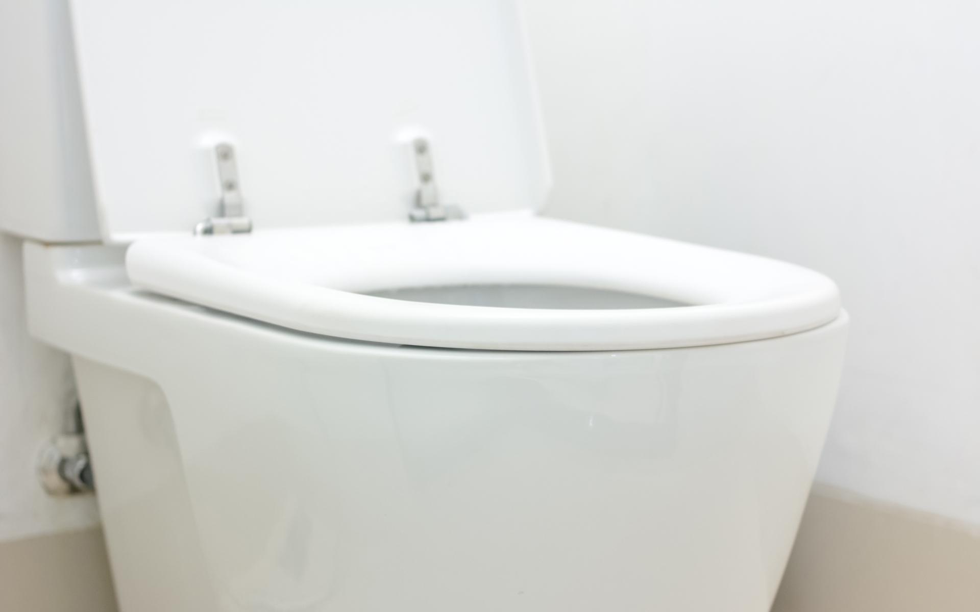 Lexington Toilet Repair